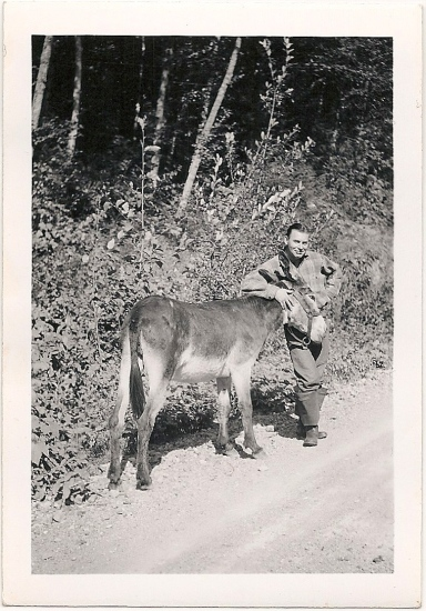 herb with donkey